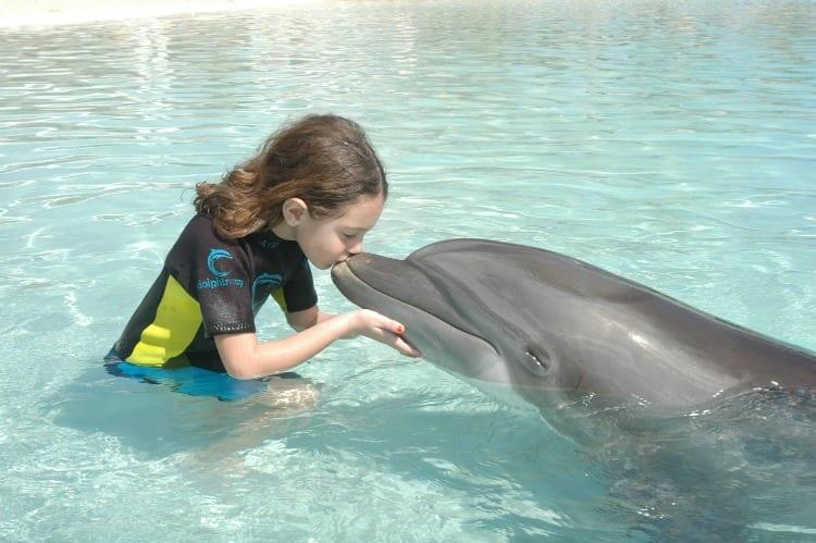 Dolphin Cay at The Atlantis Bahamas from Atlantis Bahamas Reviews via We3Travel.com