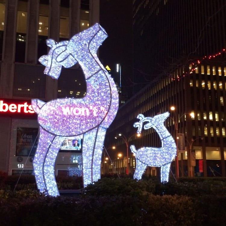 Reindeer on 6th Avenue