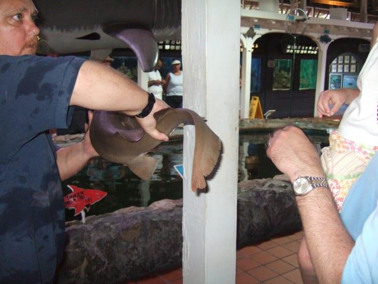 Key West Aquarium from Family Fun in the Florida Keys via We3Travel.com