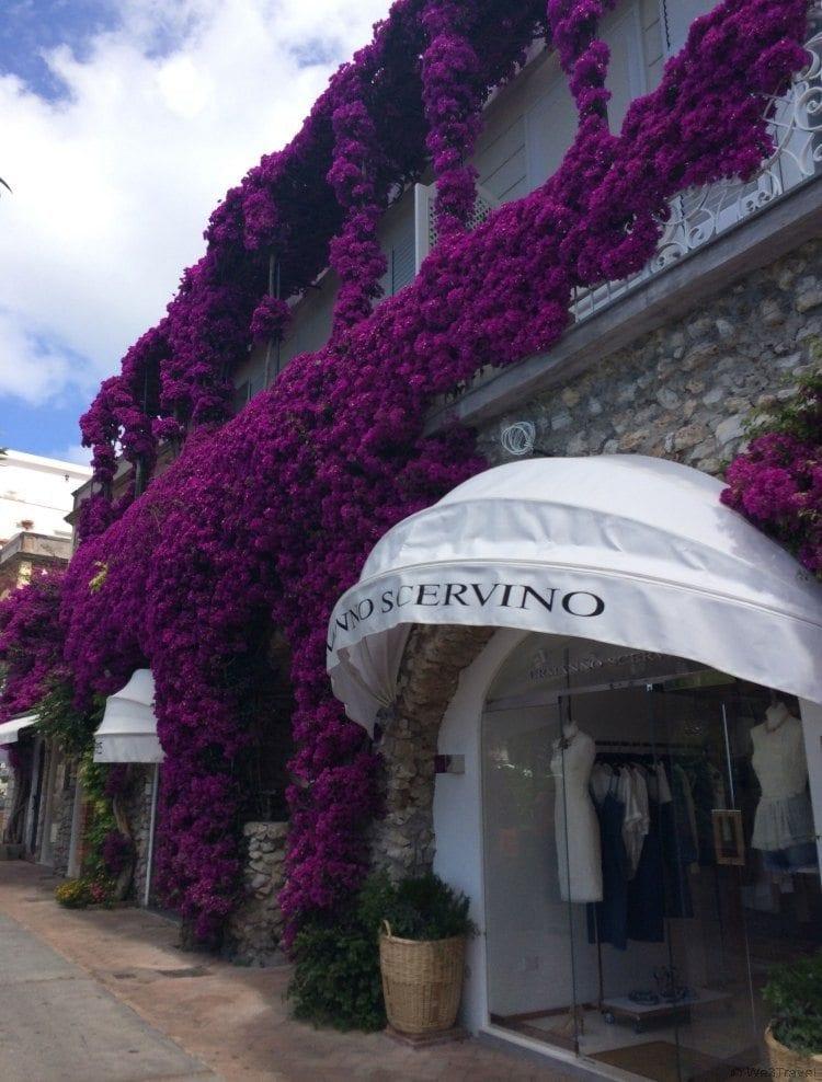 The shops of Capri -- 5 Days in Capri