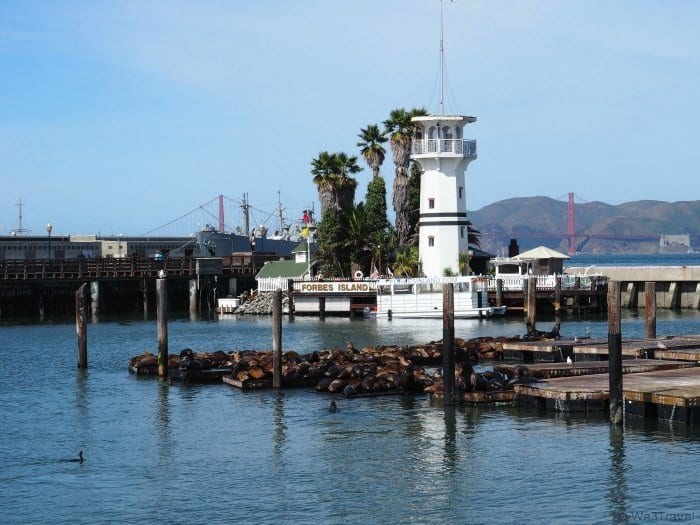 2 Days in San Francisco with Kids -- a sample itinerary of what to do with kids, tweens and teens in San Francisco if you just have two days. A visit to Pier 39 to see the sea lions is a must do for any family trip.