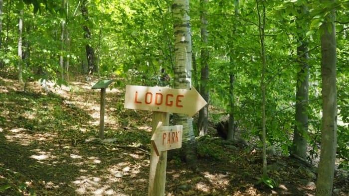 Ramblewild treetop adventure course in the Berkshires