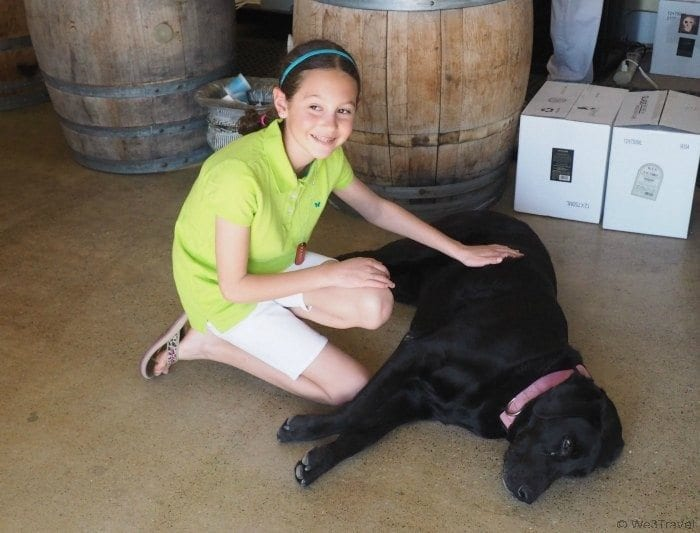 Family friendly wineries in Paso Robles, CA -- Graveyard Vineyards is much nicer than its name implies.
