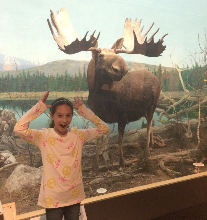 Museums in New England -- the Boston Museum of Science