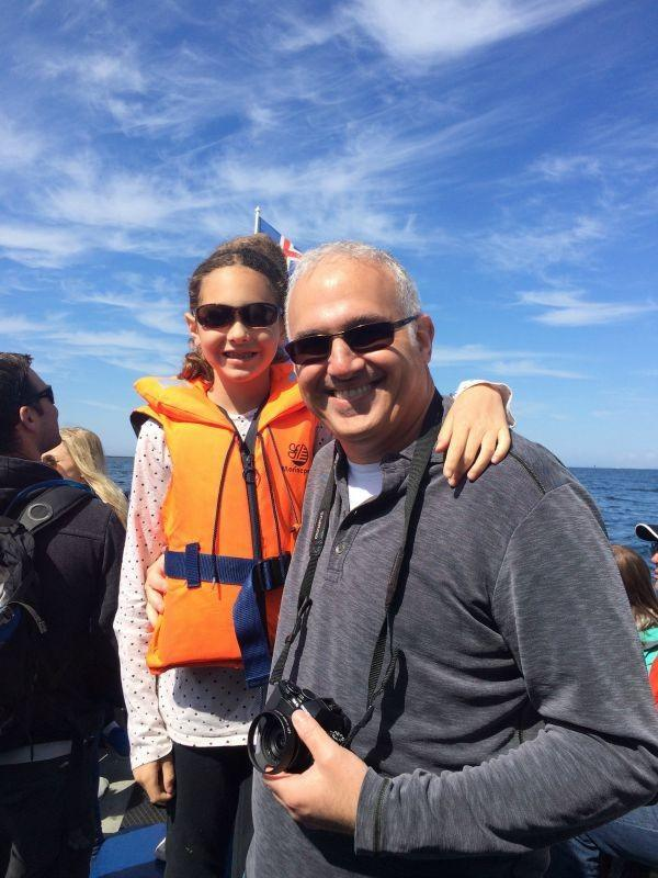 Puffin boat tours in Iceland