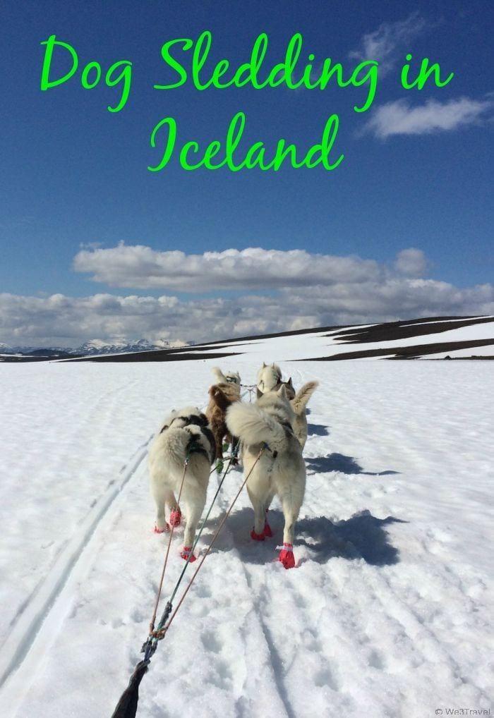 Dog sledding in Iceland -- the most amazing day!