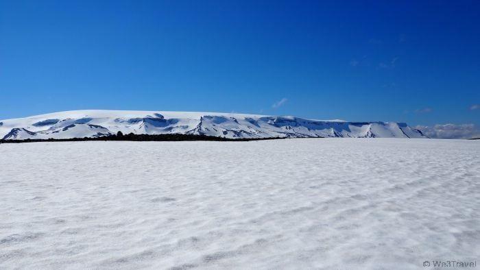 Dog sledding on Langjokull glacier in Iceland