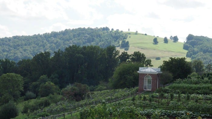 Tips for visiting Monticello with kids