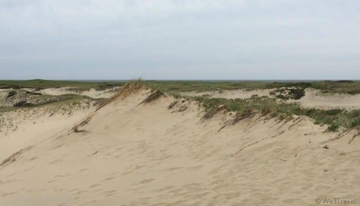 Arts Dune Tours Provincetown