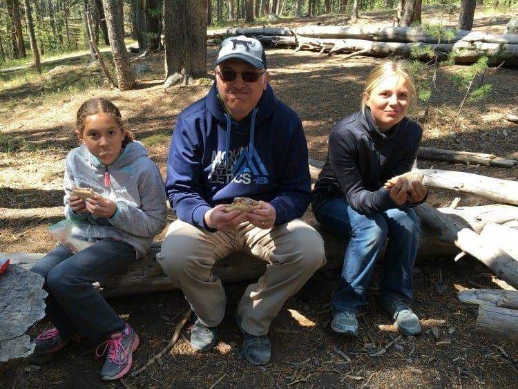 Yellowstone picnic