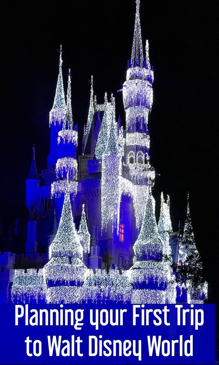Planning a Disney Vacation   First time at Disney World   Disney World first trip