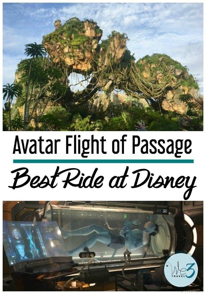 Inside Pandora Disney World and the best ride at Disney World's Animal Kingdom -- Avatar Flight of Passage
