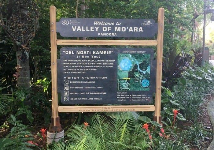 Valley of Mo'Ara Pandora