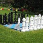 basin harbor chess