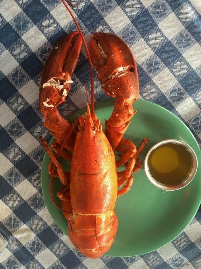 Basin Harbor lobster