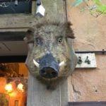 Volterra best Tuscan towns
