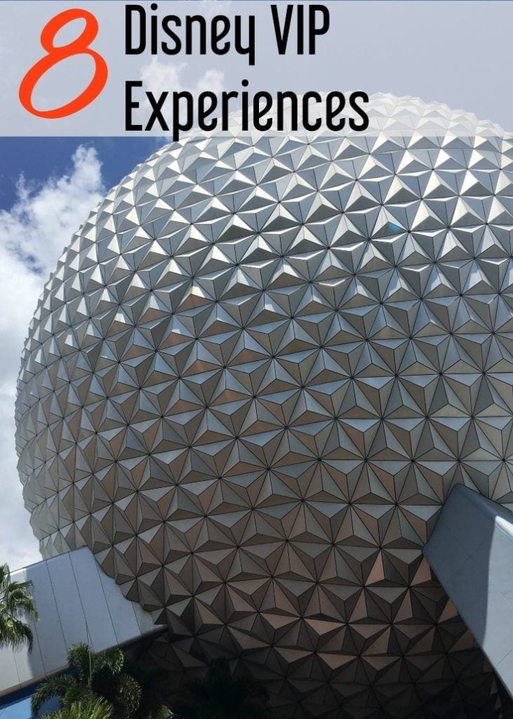 8 Disney VIP Experiences at Walt Disney World from VIP Disney Tours to special events and animal encounters.