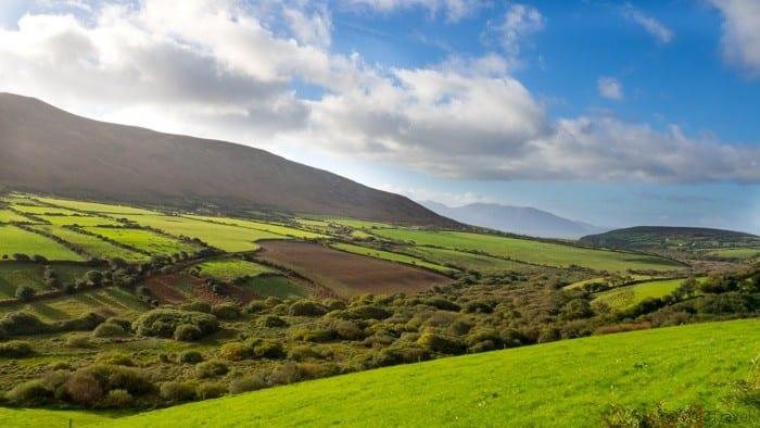 Best things to do in Ireland Dingle fields