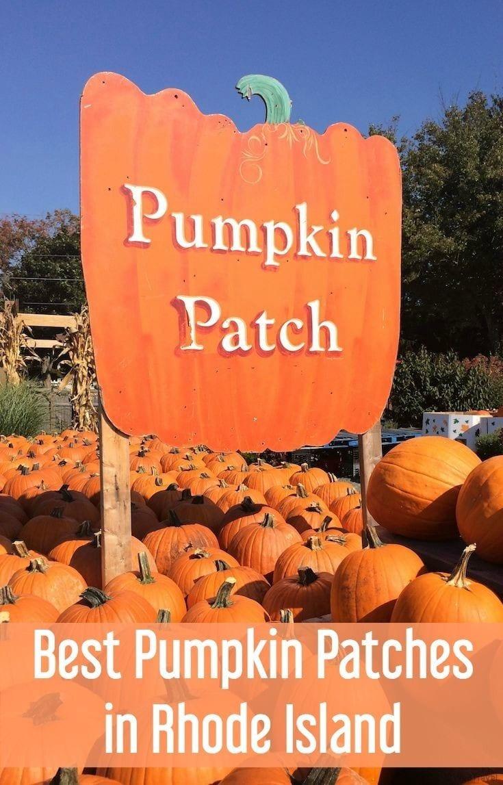 Best pumpkin patches in Rhode Island for pumpkin picking