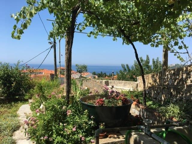 House Verde Dubrovnik
