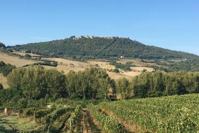 Montefollonico in Tuscany