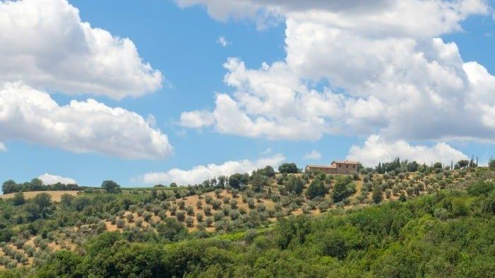 Montalcino hills