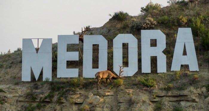 Medora sign with elk