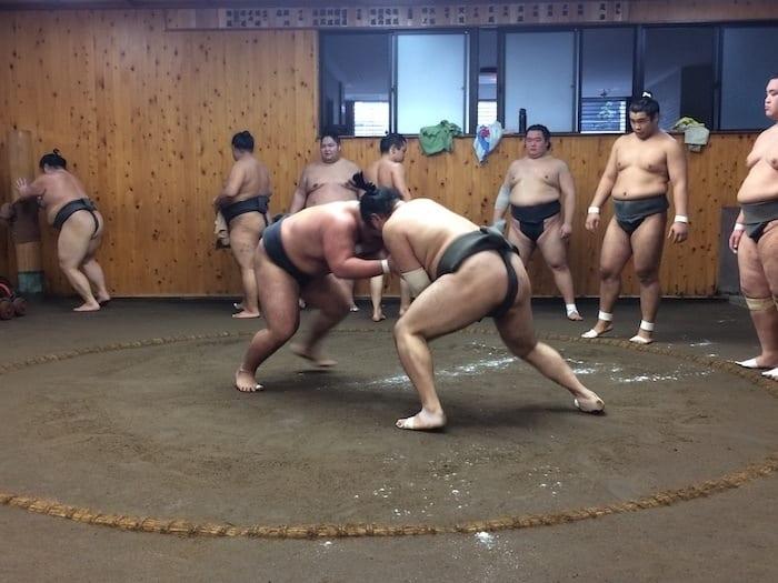 Sumo practice at a sumobeya, Tokyo