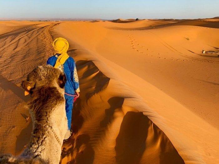 Morocco desert camel guide