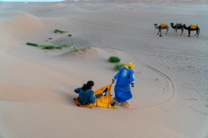 Sledding down the dunes with the camels in the background