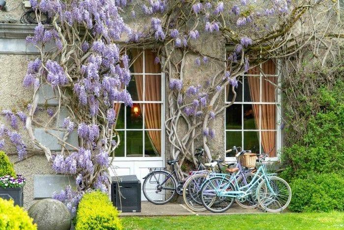 biking on Mount Juliet estate