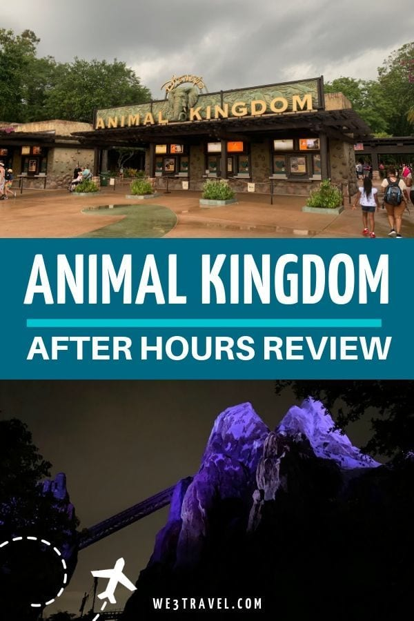 Animal Kingdom After Hours review at Disney World