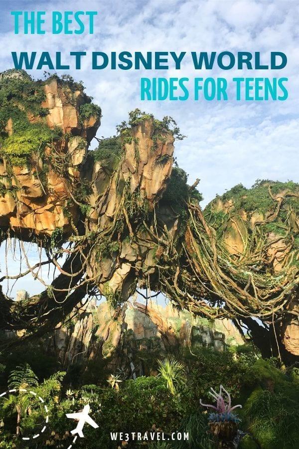 The Best Walt Disney World Rides for teens