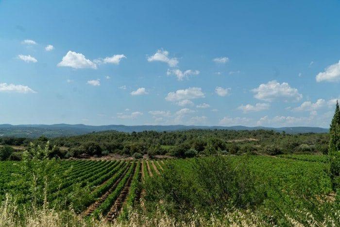 La Clape vineyards