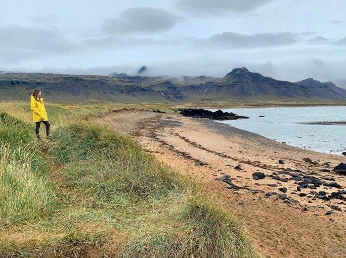 Beach at Budakirkja