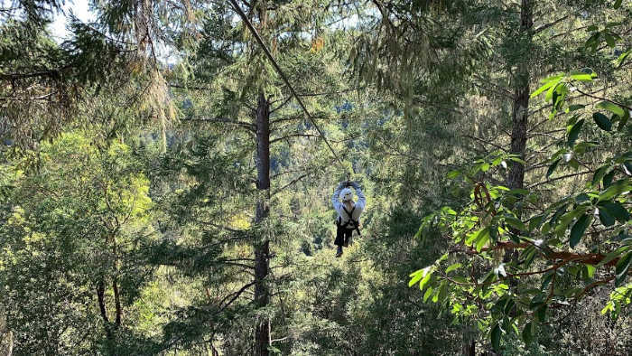 zipping with Sonoma Canopy tours