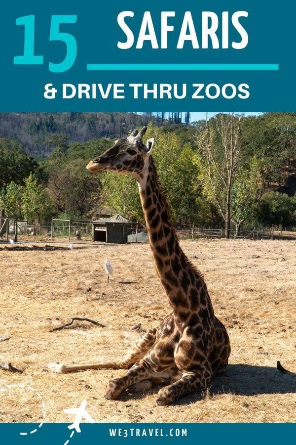 15 Safaris and Drive through zoos