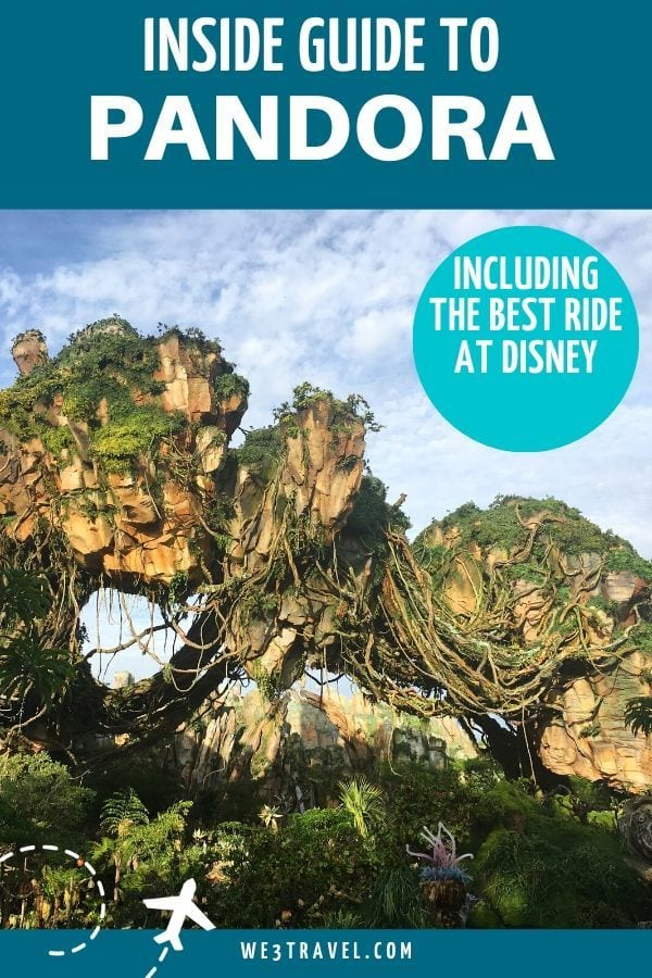 Inside guide to Pandora and the best ride at Disney