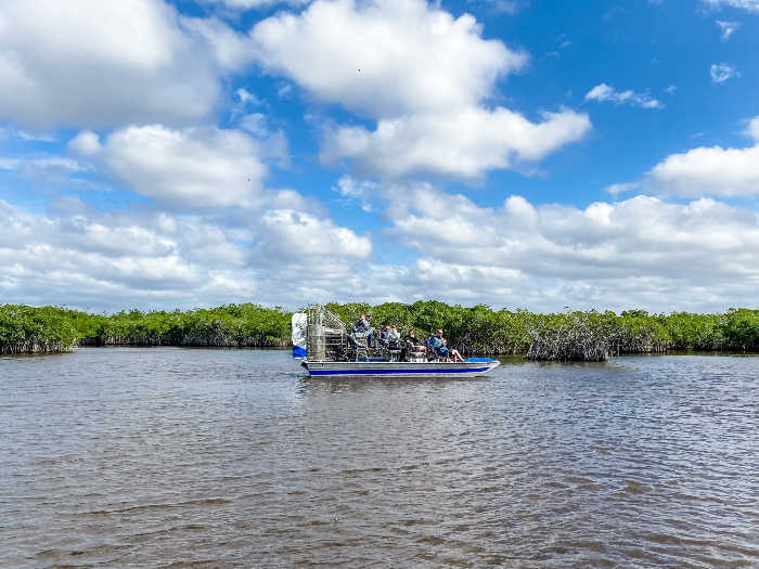 Airboat on the water in the mangroves