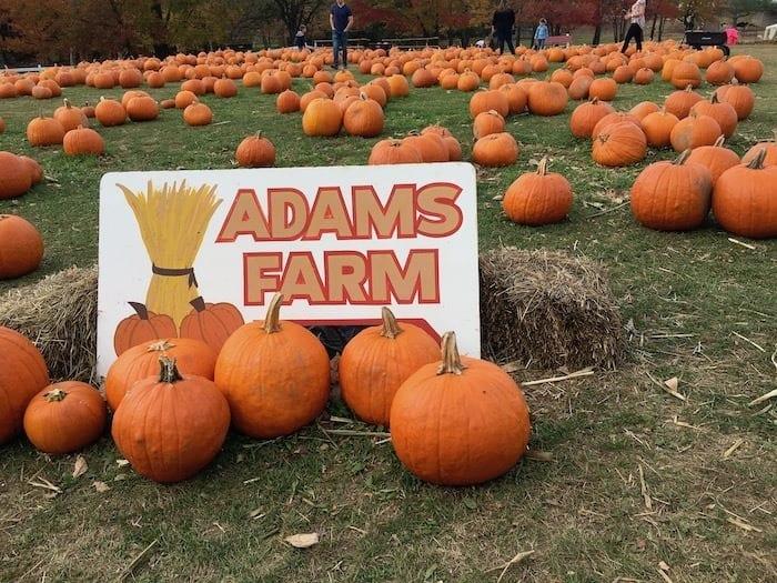 Adams Farm Cumberland RI