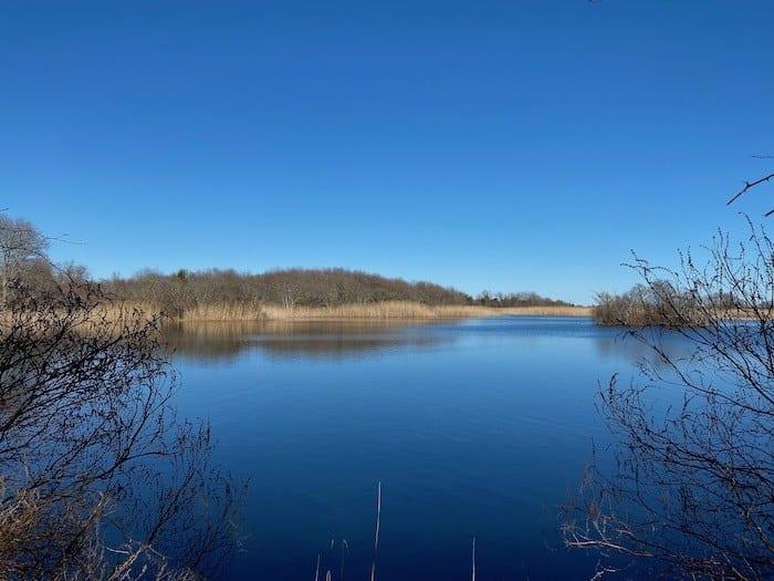 Trustom Pond lagoon