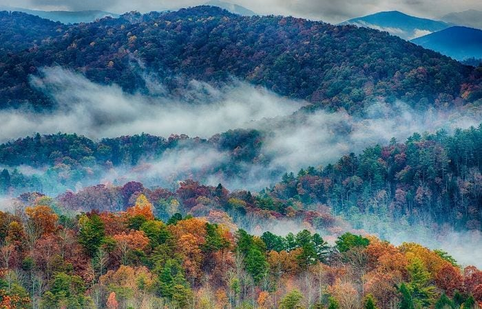 Great Smoky Mountains in the fog