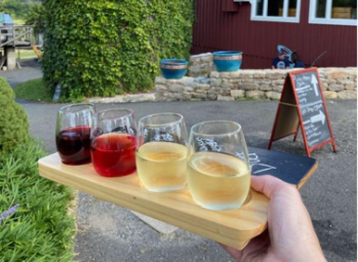 Wine flight at Hopkins Winery
