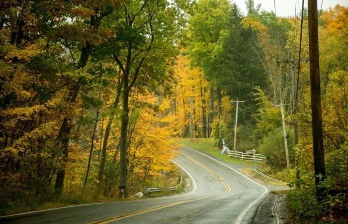 Mount Greylock fall foliage