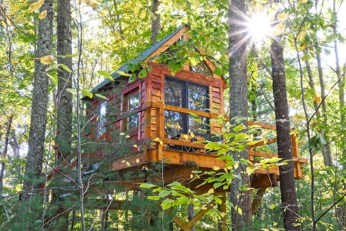 Tiny tree top cabin