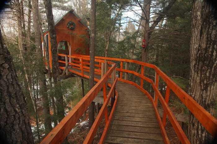 Tree top sanctuary