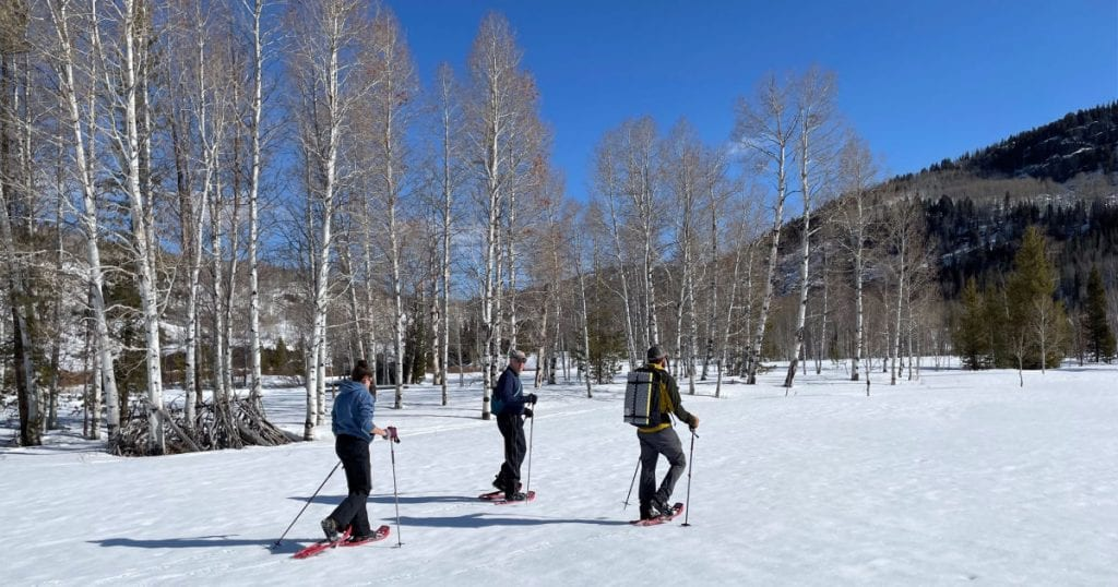 three people snowshoeing with aspen trees in the background
