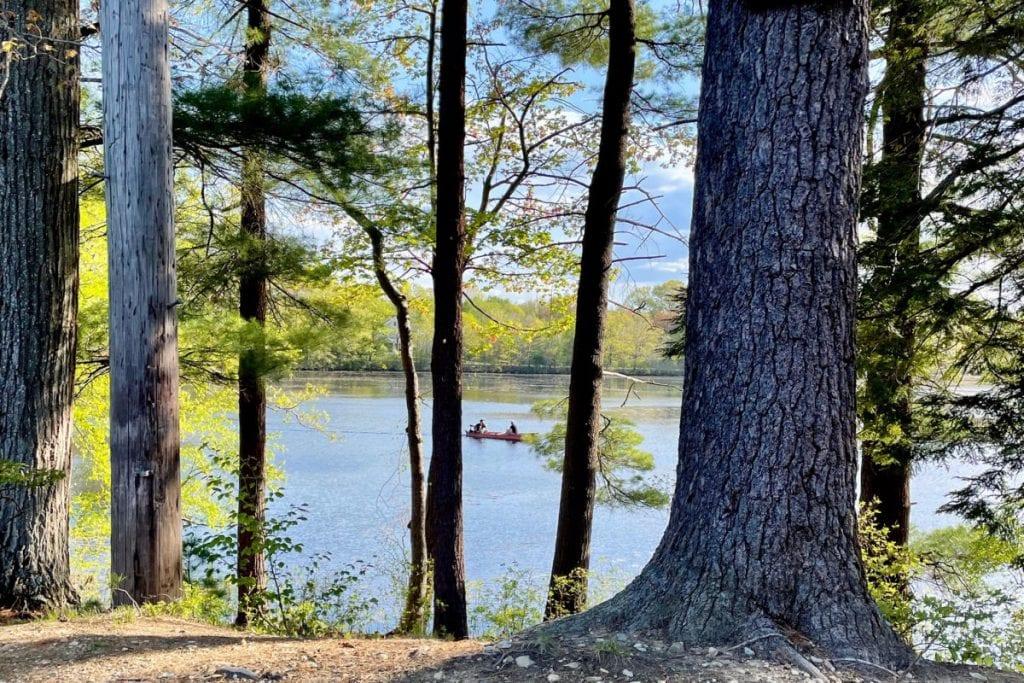 Row boat through the trees on Tuxbury Pond