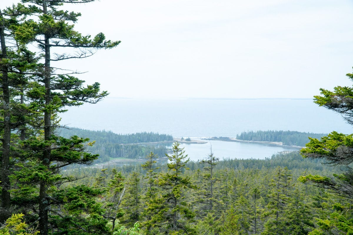 view from the top of Schoodic Mountain