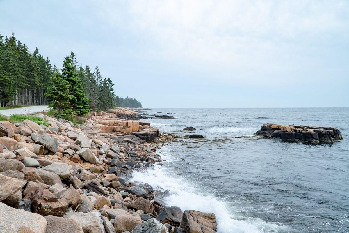 Rocky coast and pine trees on the Schoodic Peninsula
